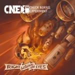 Chuck Norris Experiment - Right Between Your Eyes - Artwork