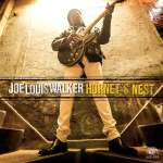 Joe Louis Walker