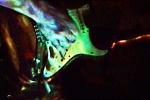 Hazi_Gitarre