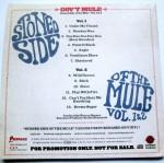 Gov't Mule Stoned Side Backcover