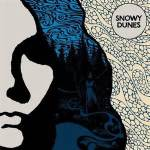 Snowy dunes cover
