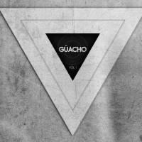 guachovol1