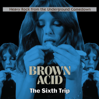 Brown Acid - The Sixth Trip